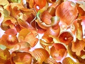 Настой из луковой шелухи при аллергии